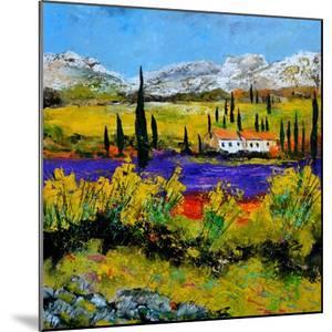 Provence 885120 by Pol Ledent