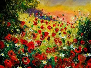 Red Poppies 5607 by Pol Ledent