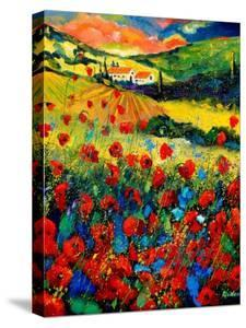 Red poppies in Tuscany (Italy) by Pol Ledent
