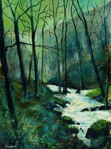River Ywoigne in winter by Pol Ledent