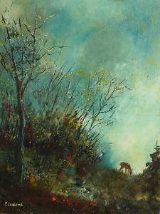Roe deer  in a september morning by Pol Ledent