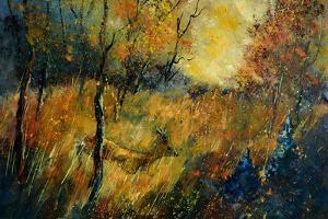 Roe Deer by Pol Ledent