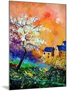Spring 50170 by Pol Ledent