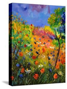 Summer 2014 by Pol Ledent