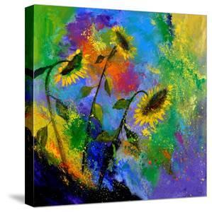Sunflowers 7741 by Pol Ledent