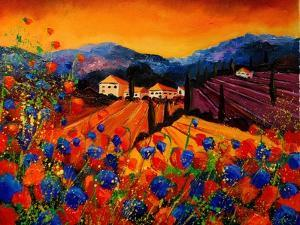 Tuscan Poppies by Pol Ledent
