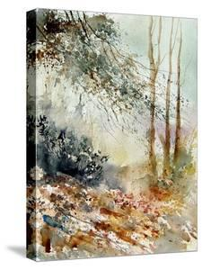 Watercolor 080605 by Pol Ledent