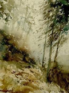 watercolor 271005 by Pol Ledent