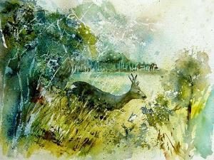 Watercolor Roe Deer 2 by Pol Ledent