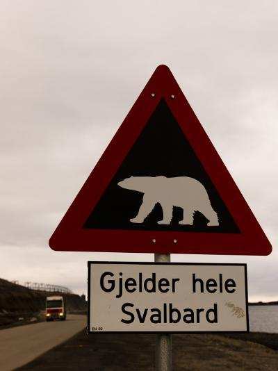 Polar Bear Crossing Sign in Svalbard, Norway, Svalbard, Norway-Norbert Rosing-Photographic Print