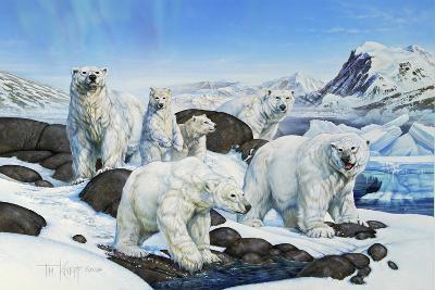 Polar Bears-Tim Knepp-Giclee Print