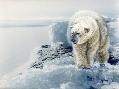 Polar Dawn-Gordon Semmens-Giclee Print