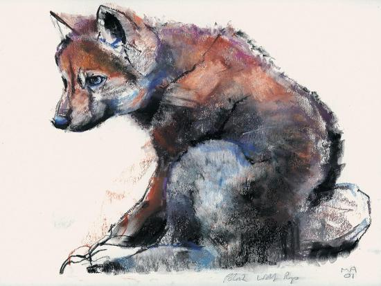 Polish Wolf Pup, 2001-Mark Adlington-Giclee Print