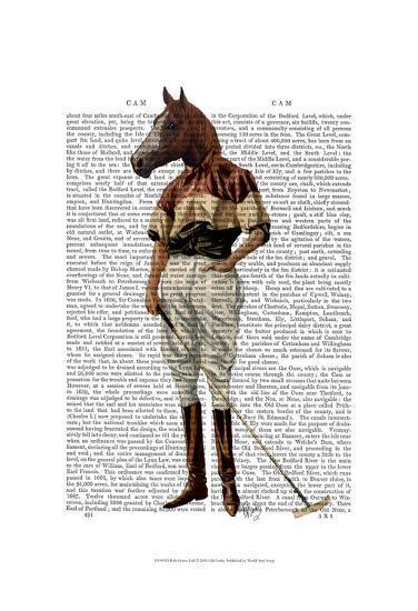 Polo Horse Full-Fab Funky-Art Print