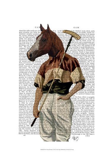 Polo Horse Portrait-Fab Funky-Art Print