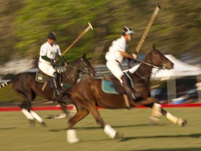 Polo, Houston, Texas, United States of America, North America-Michael DeFreitas-Photographic Print