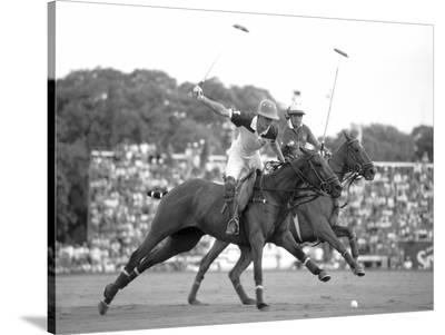 Polo players, Argentina--Stretched Canvas Print