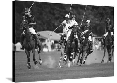 Polo players, New York--Stretched Canvas Print