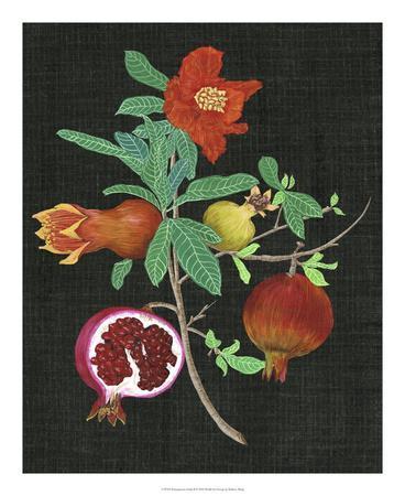 https://imgc.artprintimages.com/img/print/pomegranate-study-ii_u-l-f8x3c20.jpg?p=0