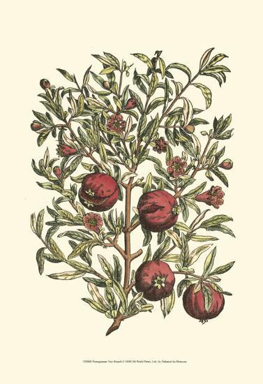 Pomegranate Tree Branch-Henri Du Monceau-Art Print