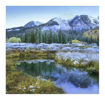 Pond and Avery Peak, San Juan Mountains, Colorado-Tim Fitzharris-Art Print
