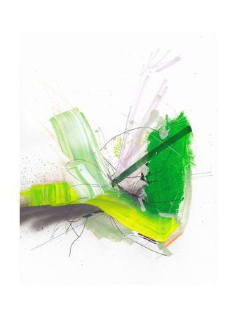 https://imgc.artprintimages.com/img/print/pond-fireworks_u-l-pw6ohp0.jpg?p=0