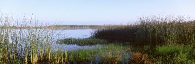 Pond, Half Moon Bay, California, USA--Photographic Print