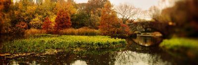 Pond in a Park, Central Park, Manhattan, New York City, New York State, USA--Photographic Print