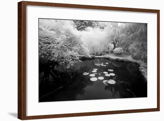Pond IR-John Gusky-Framed Photographic Print