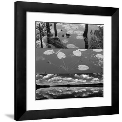 Pond-Land 1-Jean-François Dupuis-Framed Art Print