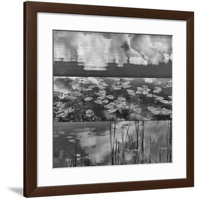 Pond-Land 3-Jean-François Dupuis-Framed Art Print