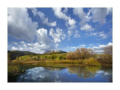 Pond near East Beckwith Mountain, West Elk Wilderness, Colorado-Tim Fitzharris-Art Print