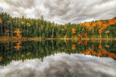 Pond Reflection, White Mountains, New Hampshire-Vincent James-Photographic Print