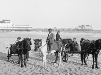 Ponies on the Beach, Atlantic City, N.J.--Photo