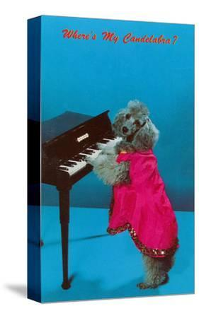 Poodle Playing Piano, Retro