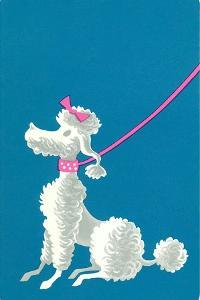 Poodle with Pink Leash