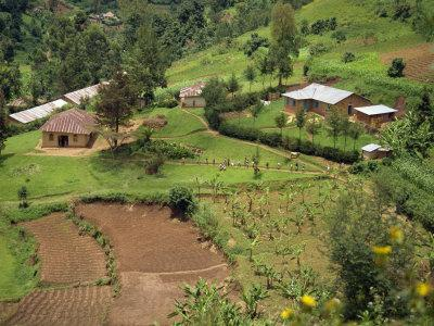 Aerial View of Children Leaving School and Terraced Fields, Kabale, Uganda, Africa