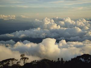 Cloudscape at Dusk from Mt. Kinabalu, Sabah, Malaysia, Borneo, Southeast Asia by Poole David