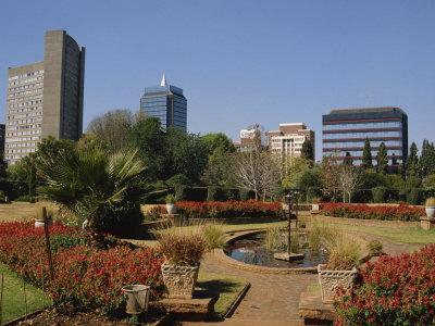 Harare Public Gardens, and City Skyline, Harare, Zimbabwe, Africa