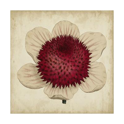 Pop Floral IV-Vision Studio-Art Print