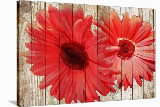 Pop Of Color--Stretched Canvas Print