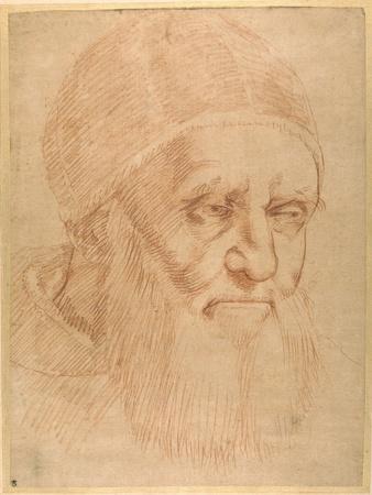 https://imgc.artprintimages.com/img/print/pope-julius-ii-after-a-cartoon-by-raphael_u-l-plocn20.jpg?p=0