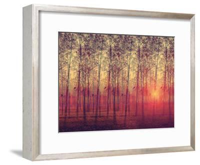 Poplar Trees in the Setting Sun