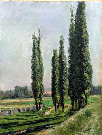 https://imgc.artprintimages.com/img/print/poplars-on-the-riverbank-at-argenteuil_u-l-pleou00.jpg?p=0