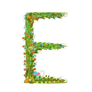 Flower Blossom Decorative Botanical Elegant Alphabet Letter E. Flower ABC Sign E. Floral Summer Col by Popmarleo