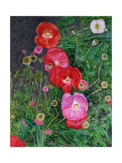 Poppies, 2009-Ruth Addinall-Giclee Print