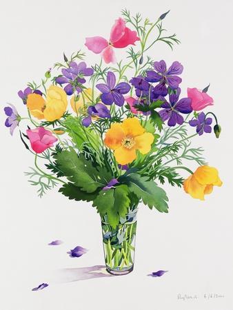 https://imgc.artprintimages.com/img/print/poppies-and-geraniums_u-l-pjdgaj0.jpg?p=0