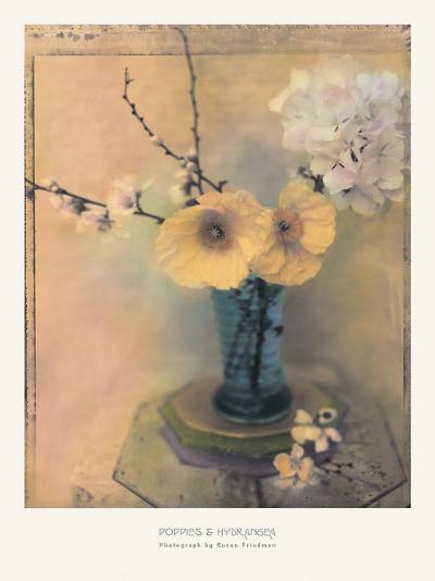 Poppies and Hydrangea-Susan Friedman-Art Print