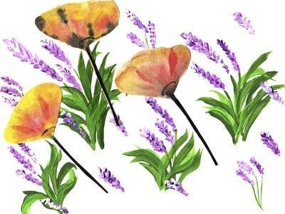 https://imgc.artprintimages.com/img/print/poppies-and-lavender_u-l-q1cs6ls0.jpg?p=0