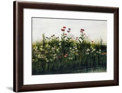 Poppies, Daisies and Thistles on a River Bank-Andrew Nicholl-Framed Giclee Print